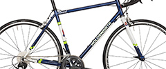 Holdsworth Brevet Steel Audax Bike