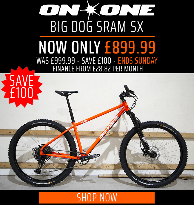 Big Dog SX
