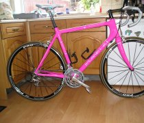 Pink Prancer bike photo