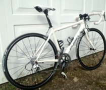 White Noise bike photo