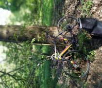 My New Bike bike photo
