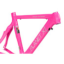Stealth Pro Carbon Frame Classic Logo