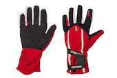 Carnac Team 2010 Gloves