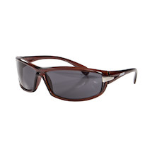 Areo Lizard Sunglasses