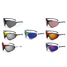 Briko Stinger Evo Glasses